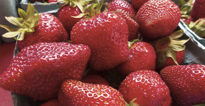 Strawberry Crowned As The Dirtiest Fruit As 22 Pesticide Residues Found in One Sample - WORLD OF BUZZ