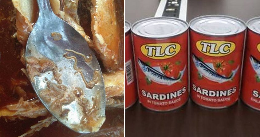 Two Popular Sardine Brands in Malaysia Recalled for Worm Contamination - WORLD OF BUZZ