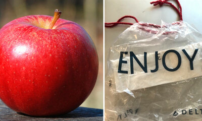 Woman Brings Apple Given by Cabin Crew Through Customs, Gets Fined RM2,000 - WORLD OF BUZZ 1