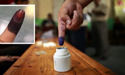 Here's Why Indelible Ink Gets Darker And Why You Can't Remove It - WORLD OF BUZZ 2