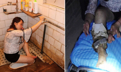 Drunk Woman Faces Crappy Situation After Getting Leg Trapped in Toilet Hole - WORLD OF BUZZ
