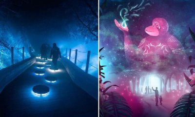 Immerse Yourself in Singapore Zoo's Luminous Lights Walk Starting July 1 at Only RM59! - WORLD OF BUZZ