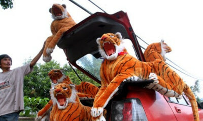 Man Makes RM5,000 a Month for Making Tiger Sculptures Despite Being Ex-Convict - WORLD OF BUZZ