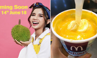 McDonald's D24 Durian Ice Cream Will be Back on 14 June 2018 - WORLD OF BUZZ