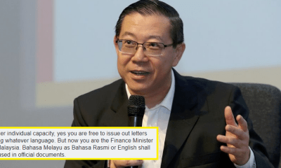 M'sians Outraged That LGE Used Mandarin in MoF Official Statement - WORLD OF BUZZ 4