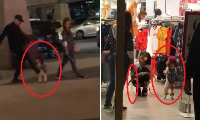 M'sians Outraged with Couple Who Tortured Their Dog Into Standing on Hind Legs At Sunway - WORLD OF BUZZ 4