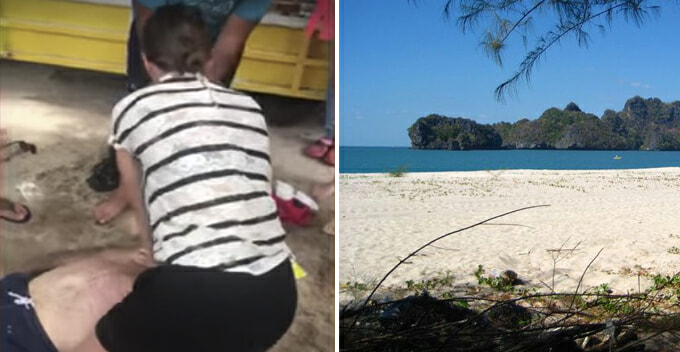Tourist Died in Pulau Langkawi Just Minutes After Getting Stung by Jellyfish - WORLD OF BUZZ