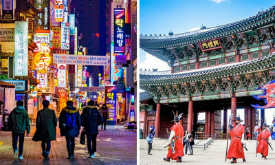 Always Wanted to Go to Korea For Free? Find Out How! - WORLD OF BUZZ