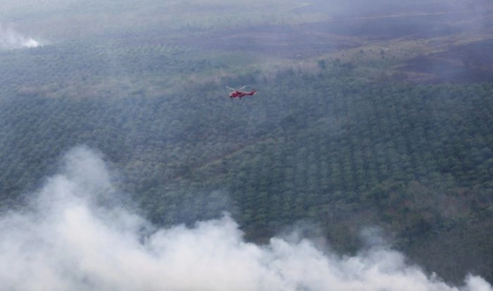 Forest Fires in Indonesia Could Bring The Haze Back to Malaysia Soon - WORLD OF BUZZ