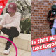 Local Celebs Allegedly Kantoi Wearing Fake Goods - WORLD OF BUZZ