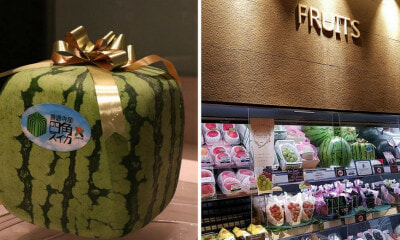 Japanese Square Watermelons Are Now Being Sold in KL, And They Cost RM2,000 EACH! - WORLD OF BUZZ 2