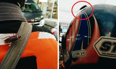 Girl Realises Cockroach is On Moto-Taxi Driver's Back Halfway Through Her Journey - WORLD OF BUZZ 1