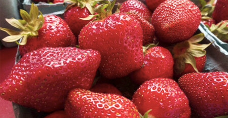 MoH Will Be Checking All Australian Strawberries For Needles Before Being Allowed into Malaysia - WORLD OF BUZZ 4
