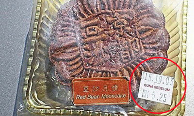 M'sian Woman Bought This Mooncake 15 Years Ago, And It's Still in Pristine Condition Today - WORLD OF BUZZ