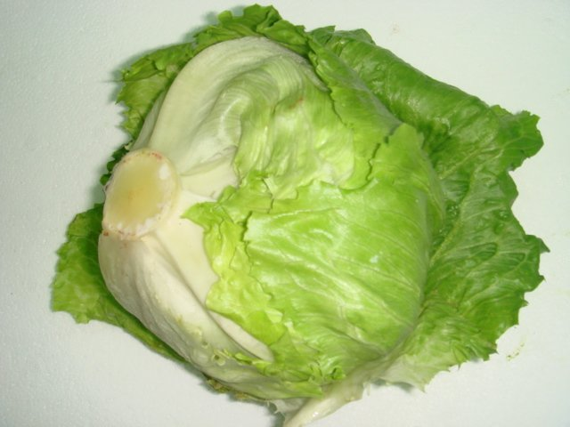 After S'pore, Malaysia Orders All Vendors to Stop Selling This Iceberg Lettuce Containing Harmful Pesticide - WORLD OF BUZZ 2