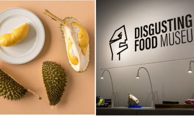 Durian Becomes One Of 80 Exhibits At Disgusting Food Museum - WORLD OF BUZZ 6