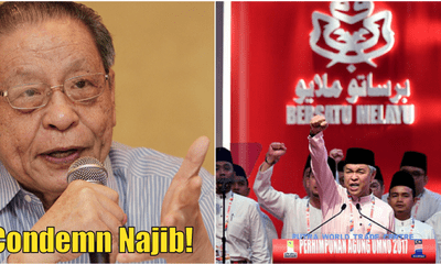 Kit Siang: Condemn Najib Before Umno Can Wash Its Hands Of The 1MDB Scandal - WORLD OF BUZZ 4