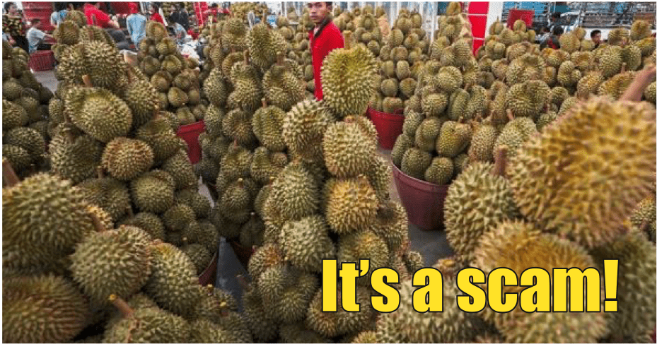 155 People Lost RM3.1mil In Musang King Investment Plan Scam - WORLD OF BUZZ