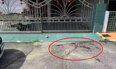 Dog Slips Out Of House And Gets Shot In Front Of Gate By Local Council Staff In Perak - WORLD OF BUZZ