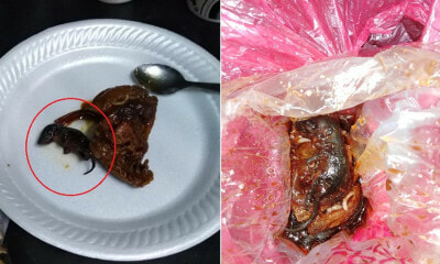 Man Shockingly Finds Dead Baby Rat in Soy Sauce Chicken He Bought From Warung - WORLD OF BUZZ