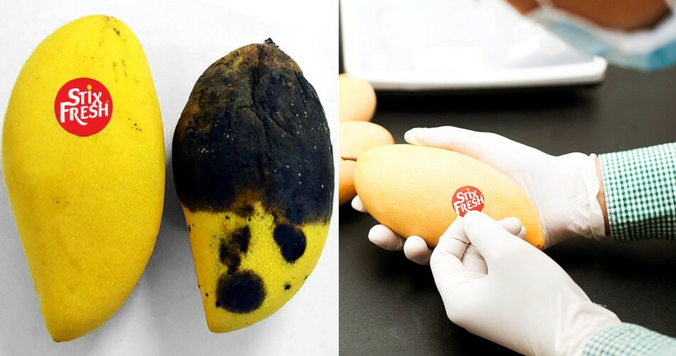 This Ingenious 'Magic Sticker' Stops Fruits From Ripening Too Fast, & It's Invented by A M'sian! - WORLD OF BUZZ