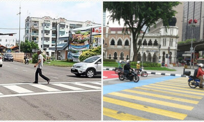 Netizen Wants Drivers to Know Why Zebra Crossings Have Different Colours - WORLD OF BUZZ