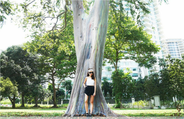 [Test] M'sians Living in Singapore Share the Top X Places to Visit to Avoid the Tourist Traps - WORLD OF BUZZ 3