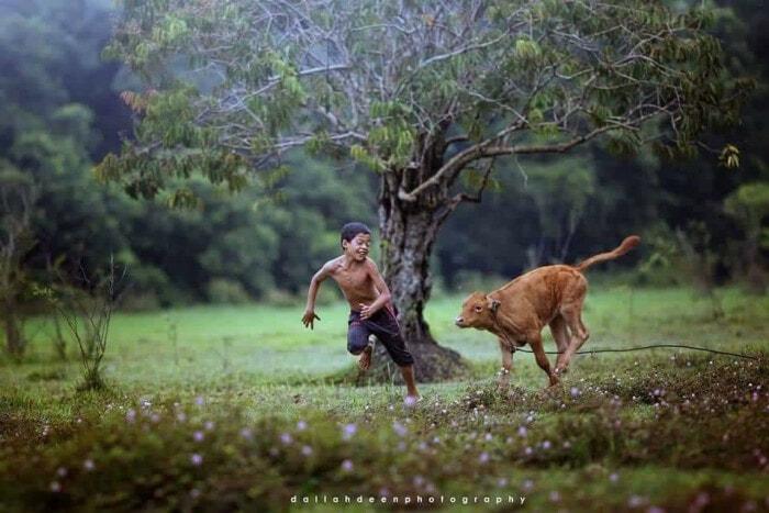 These Stunning Photos of A Terengganu Boy Playing With Buffalos Won International Awards - WORLD OF BUZZ 1