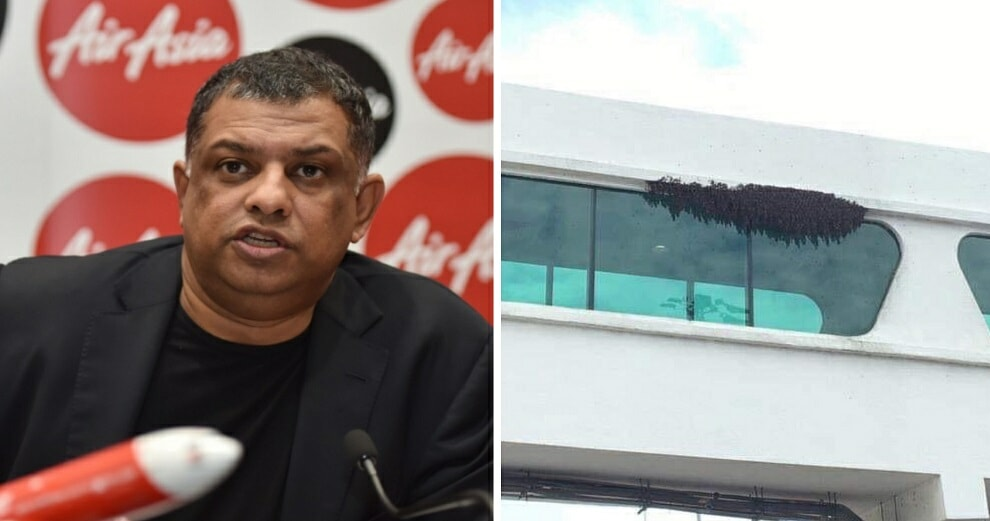Tony Fernandes Shares Photo of Bees in klia2 - WORLD OF BUZZ