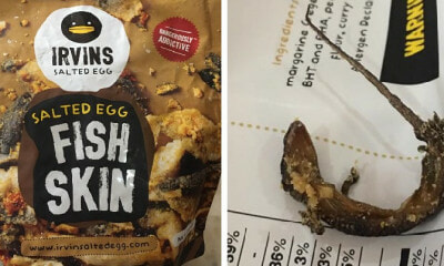 Woman Grossed Out After Finding Deep-Fried Lizard in Irvins Salted Egg Fish Skin Snack - WORLD OF BUZZ 4
