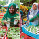 Inspiring M'sian Couple Sells Plant Saplings At RM1, Earns Up to RM4,000 Per Week - WORLD OF BUZZ