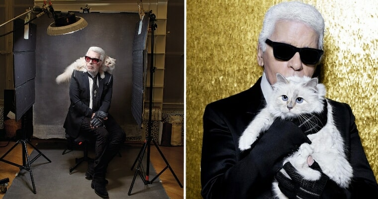 Karl Lagerfeld's Cat Richer Than All of Us As She Inherits Part Of RM1.55 Bil After Owner's Death - WORLD OF BUZZ
