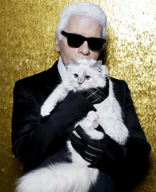 Karl Lagerfeld's Cat To Inherit Large Chunk Of Her Owner's RM1.55 Billion Fortune - WORLD OF BUZZ