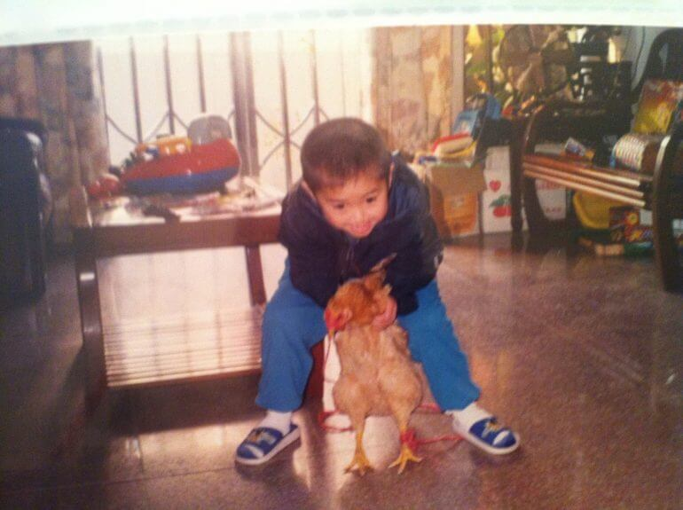 """Man Shares Story About How Childhood Pet Chicken """"Disappeared"""", Netizens Relate - WORLD OF BUZZ 1"""