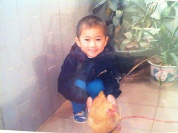 """Man Shares Story About How Childhood Pet Chicken """"Disappeared"""", Netizens Relate - WORLD OF BUZZ 2"""