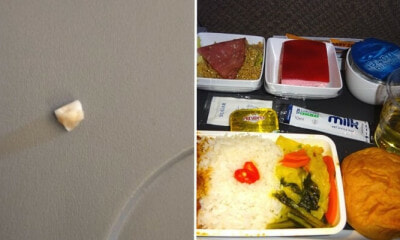 Singapore Airlines Investigating After Passenger Shockingly Finds Human Tooth In His Rice - World Of Buzz