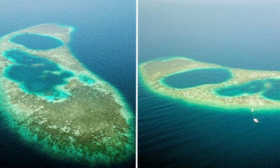 "Researchers Find Breathtaking Discovery In Sabah, Malaysia's Only ""Blue Hole"" - WORLD OF BUZZ 1"