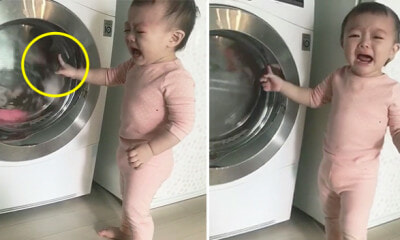Toddler Breaks Down In Tears After Mom Threw His Bantal Busuk Into Washing Machine - WORLD OF BUZZ