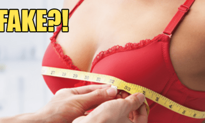 Update: Study That Said M'sian Women Have the Second Smallest Boobs is a Hoax?! - WORLD OF BUZZ 1
