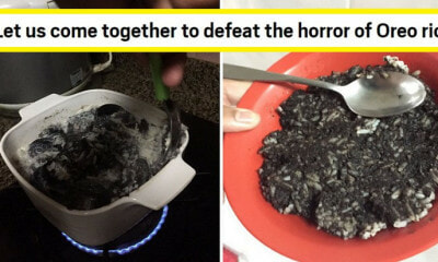 "Viral Tweet Says ""Oreo Rice"" is ""Sedap Gila"", But M'sians & International Media Are Grossed Out - WORLD OF BUZZ"