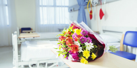 Cancer Patient Visitors Banned from Bringing Fresh Flowers For Risk of Infections - WORLD OF BUZZ
