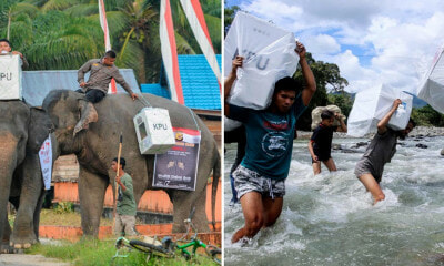 Indonesian Election Workers Had to Ride Elephants & Cross Rivers to Deliver Ballot Boxes to 800,000 Polling Stations - WORLD OF BUZZ