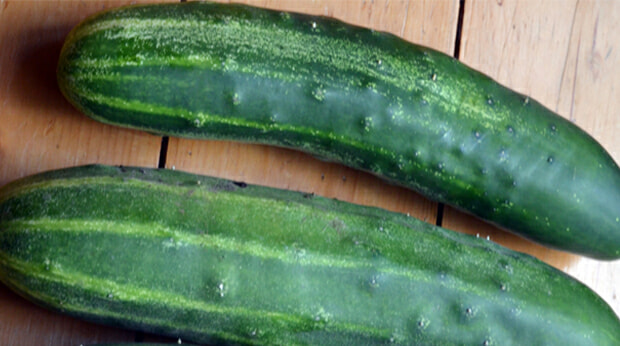 M'sian Woman Lodges Report Because Husband Loves Using Cucumber During Intense Sex - WORLD OF BUZZ