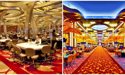 Singaporeans and PRs to Pay 50% More for Casino Daily and Annual Entry Fees Starting April 4 - WORLD OF BUZZ 3