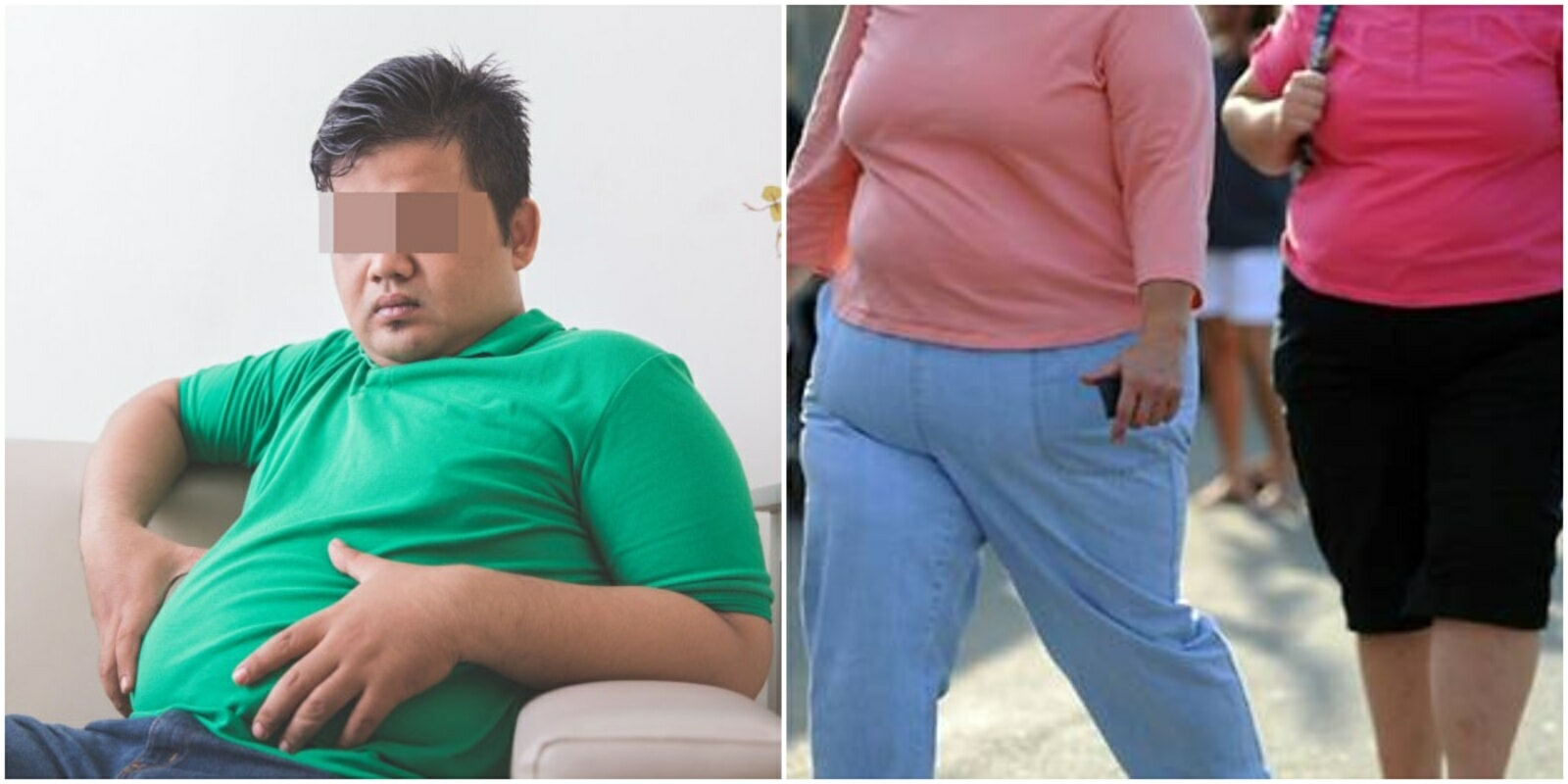 Study Shows the Rounder Your Bellies, The Smaller Your Brain May Become - WORLD OF BUZZ 2