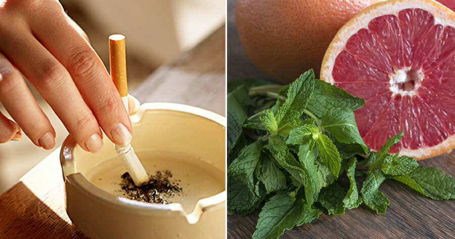 Study: Smokers Can Reduce The Urge to Smoke by Sniffing Pleasant Aromas Instead - WORLD OF BUZZ