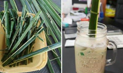 This Cafe Creatively Uses Palm Leaves as Bio-Degradable Straws & It's Really Easy to Make! - WORLD OF BUZZ 3