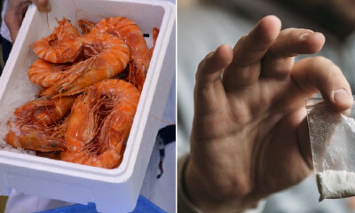 Cocaine & Ketamine Shockingly Found in All Samples of UK Freshwater Shrimp - WORLD OF BUZZ