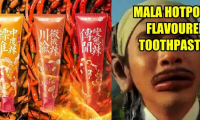 Mala Hotpot Flavoured Toothpaste - WORLD OF BUZZ 3