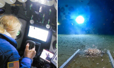 Man Breaks World Record For Deepest Submarine Dive, Finds Plastic Waste at Bottom Of The Ocean - WORLD OF BUZZ